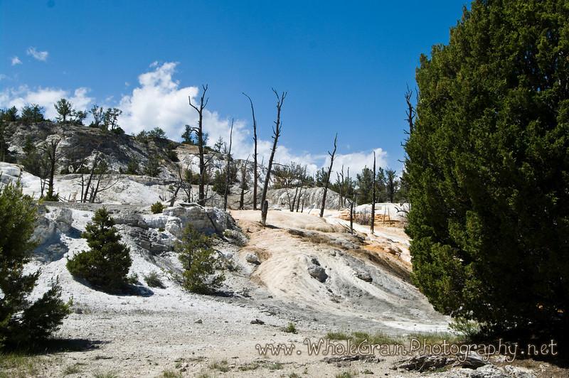 20100713_Yellowstone_2807_1.jpg