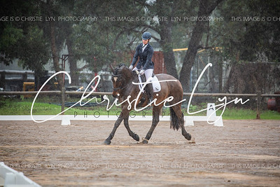Timber Treaters Bridgetown- Henty Winter Dressage Championships