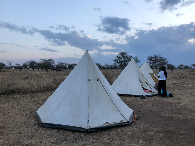 Tents in Serengeti National Park