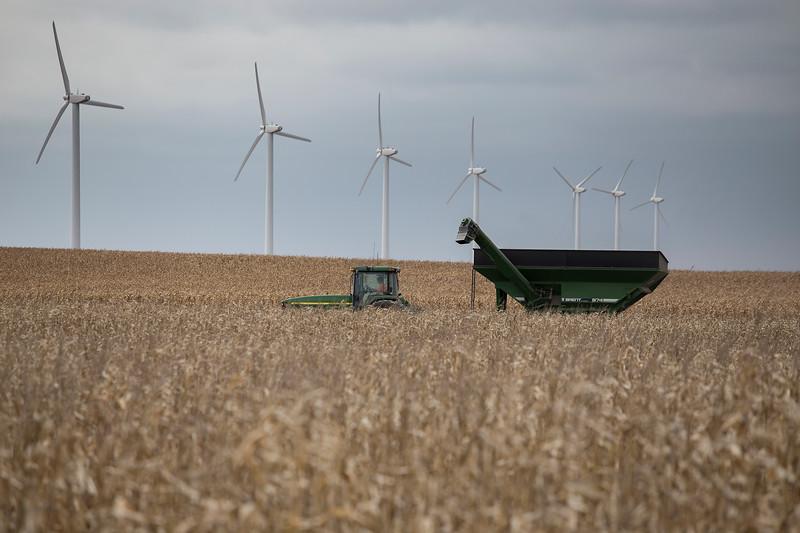 Harvest in Hamilton County