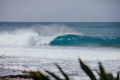 2020 SURF