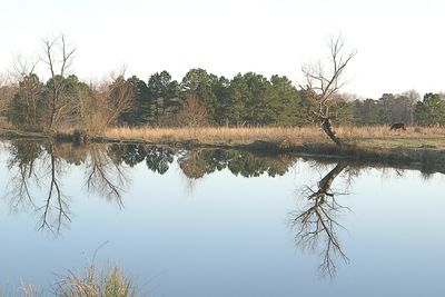 Ponds around the Ranch