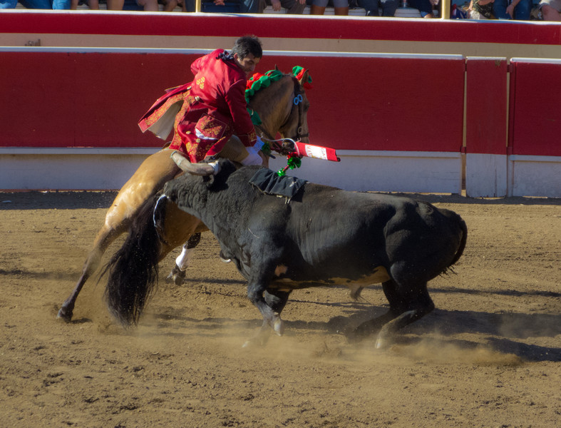Cavaleiro Luis Rouxinol with the very tricky first bull of the day.