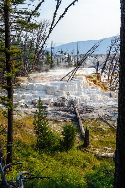 20130816-18 Yellowstone 199.jpg