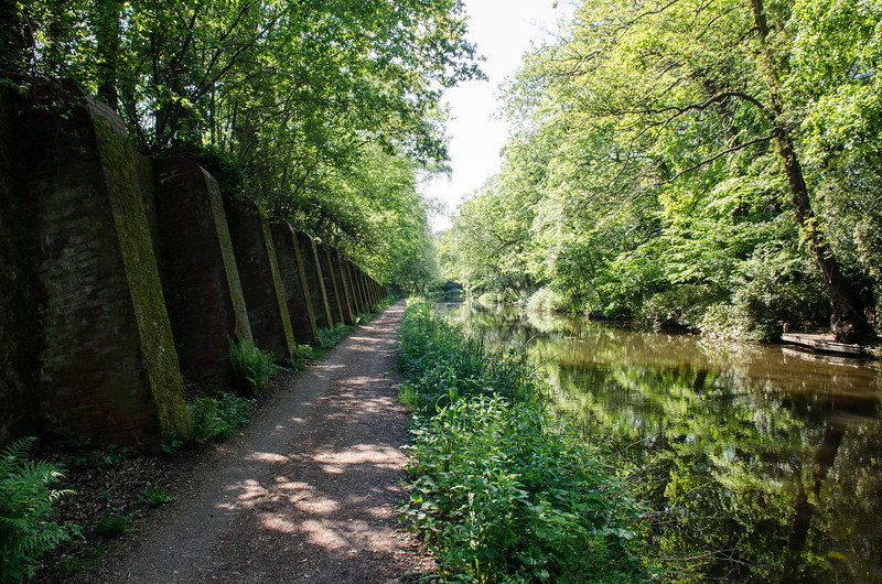 Basingstock Canal at Deepcut
