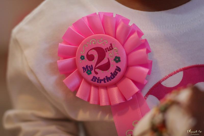 Anori 2nd Birthday-4.jpg