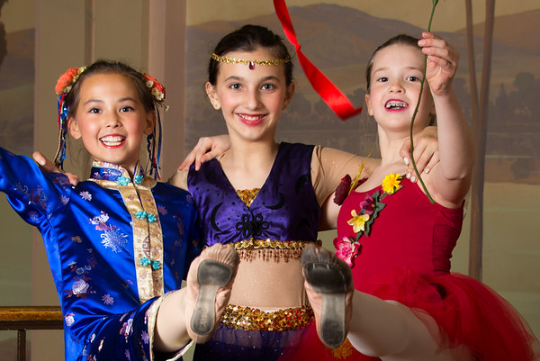 2014 - Ballet America