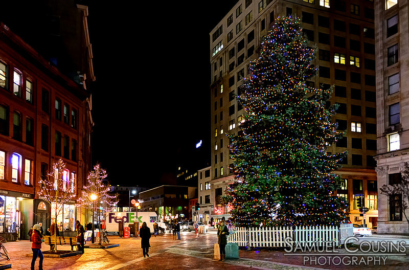 The Christmas Tree in Monument Square.