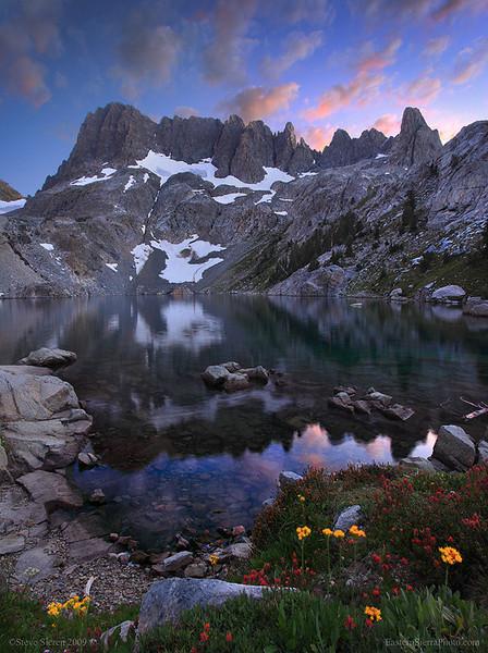 Iceberg Lake Wildflowers, Ansel Adams Wilderness, Eastern Sierra Nevada