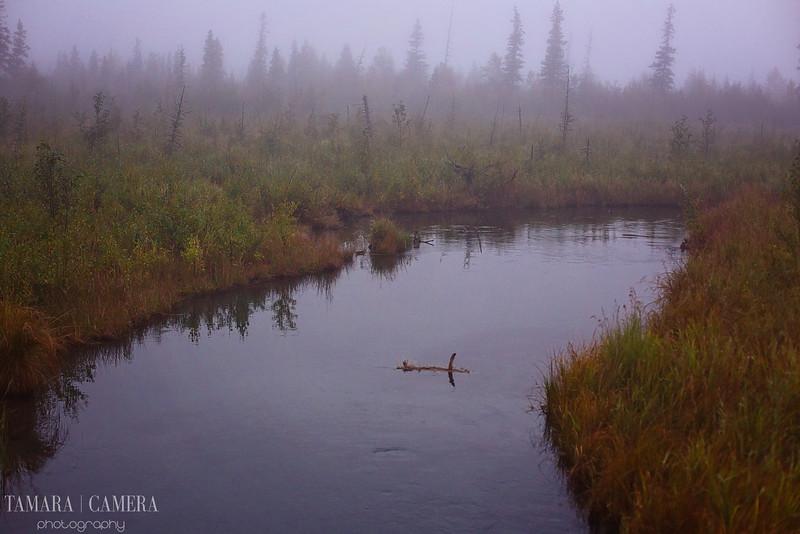 Eagle River3-2-2.jpg
