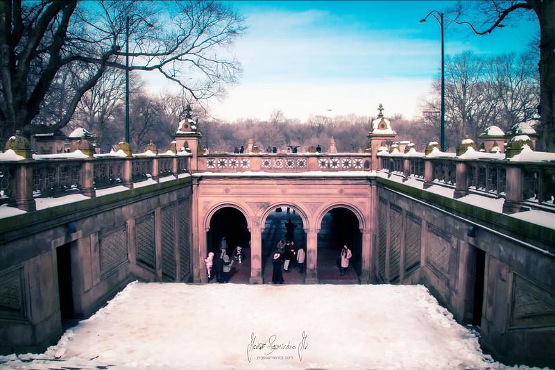 jorge-sarmiento-photography-video-photographer-newark-new-jersey-new-york-central-park-2021-IMG_7352.jpg