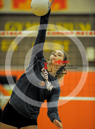 Girls Volleyball Fall 2017 Corona Del Sol vs Hamilton