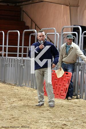 2012 DeKalb County Fair - Pigs