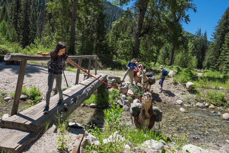 Oregon | Family Trekking with Wallowa Llamas | 2018