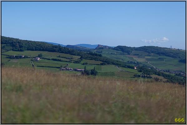 2012-07-07 La Charolaise