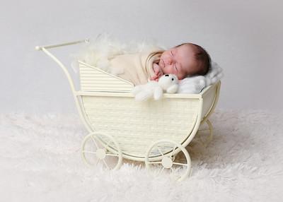 Oberlander Newborn