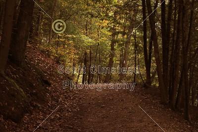 2010 Hocking Hills State Park, Ohio (10-03-10)