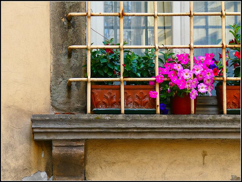 2018-06-Lucca-1304.jpg