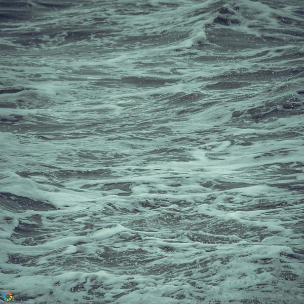Coast-Mar19 (10 of 45).jpg