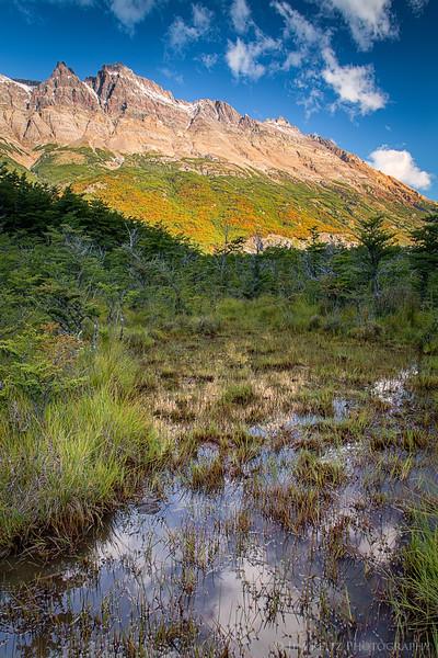 Early autumn color in the Rio de Las Vueltes river valley, north of El Chalten, Argentina