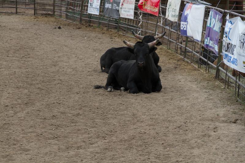 2011_07_04 Wyoming 002.jpg