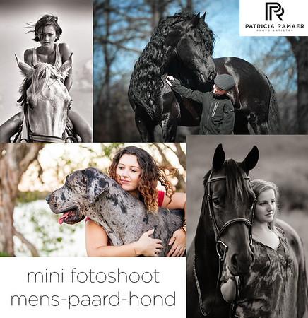 HorsePortraits Festival 2015