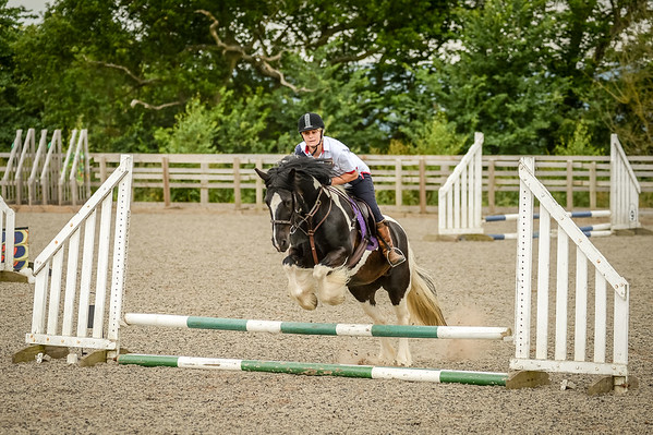 Showjumping Session