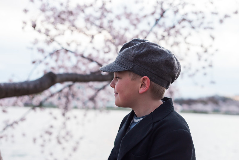 CherryBlossom-13.jpg
