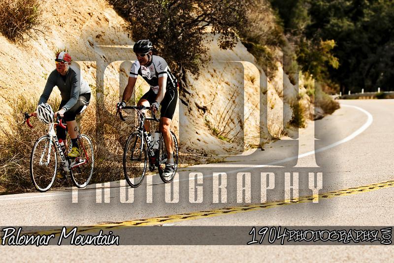 20110205_Palomar Mountain_0074.jpg
