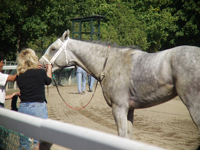 Saratoga Race Course 08-28-2001