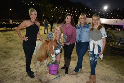 Riding Club Rocks the Ranch for Equine Therapy