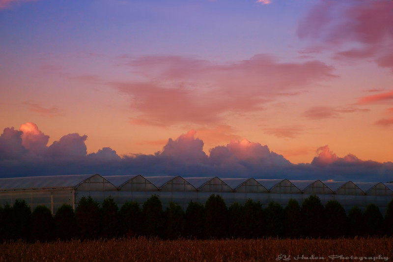 "Oct.12th, 2007 An interpretation of a sky above some greenhouses. Is this what people call ""Greenhouse gazes"" :-) Have a great day. JY"