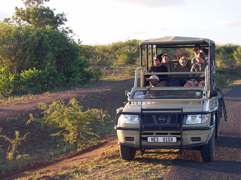 P5046269-safari-vehicle.JPG