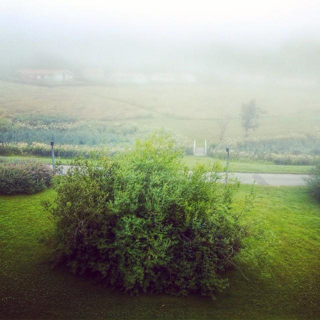 foggy brastad sweden morning