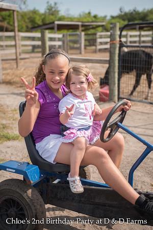 Chloe's 2nd at D & D Farms