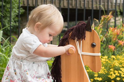 Eleanor and the Rocking Horse