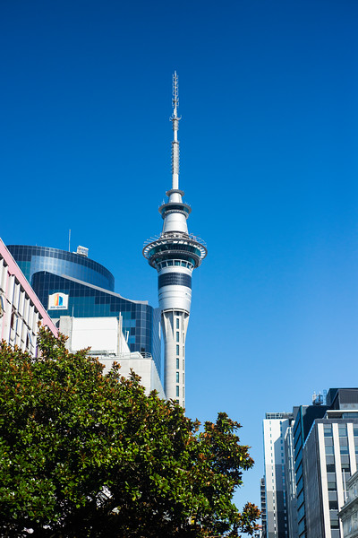 Auckland SkyCity Tower