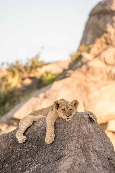Tanzania_Feb_2018-598.jpg