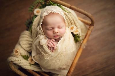 Addelyn L Newborn