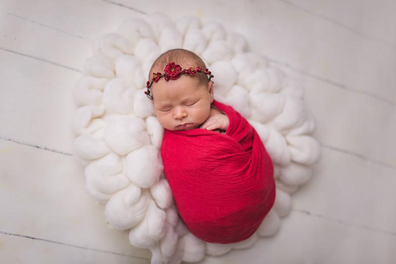 Kaylyn Newborn-105.jpg