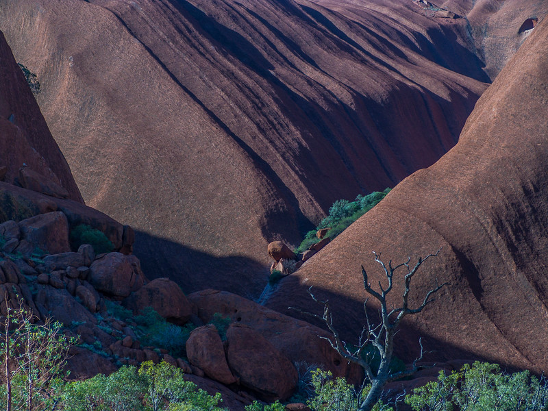 Australia-02038.jpg