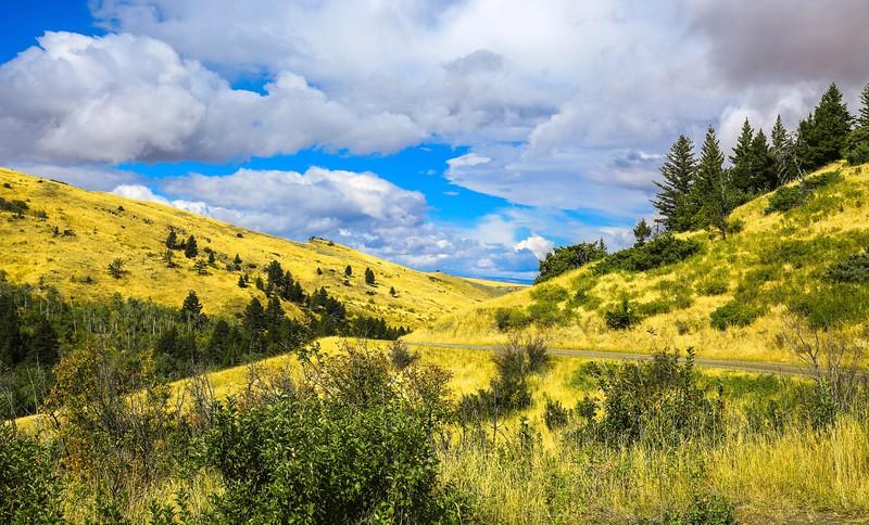 Livingston landscape 20.jpg