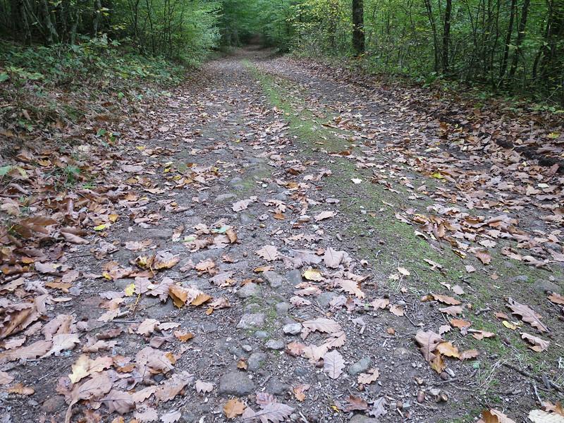 Oude Romeinse weg