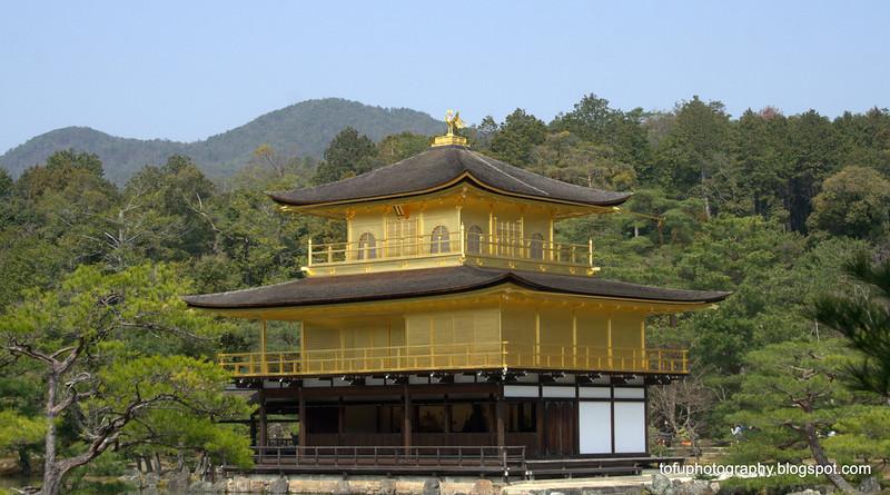The beautiful Kinkakuji Temple in Kyoto, Japan in March 2015