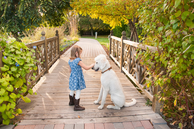 DogDays_Dogs_Gardens_2015_PIC_6423.jpg