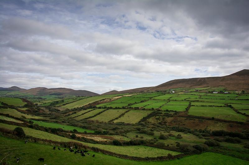 Ireland100.jpg