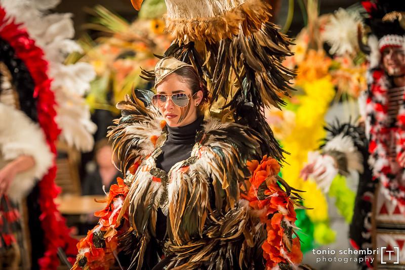 carnival13_sun-1443.jpg