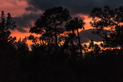 03_Everglades - Ten Thousand Islands - Uncategorized