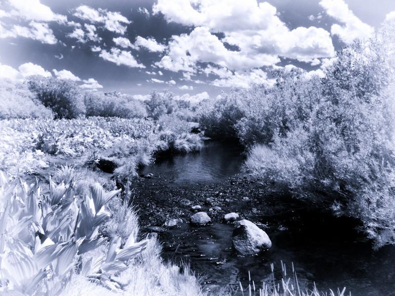 aug 20 - mammoth creek.jpg