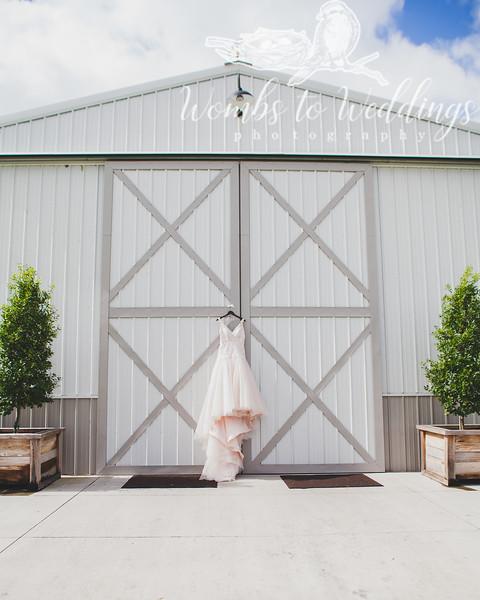 Central FL wedding photographer-0031.jpg